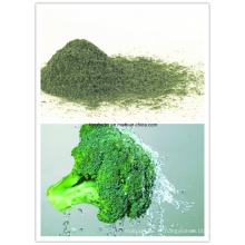 Extrato de brócolis (1% Sulforafane HPLC) Nº CAS: 142825-10-3