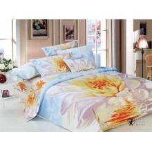 100% хлопок Twill одеяло одеяло набор 3D Custom напечатано из провинции Цзянсу