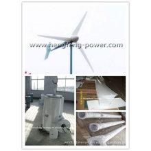 3KW de la rejilla corbata aerogenerador inverter