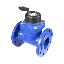 "Agriculture Irrigation Water Meter (2"" to 12"")"