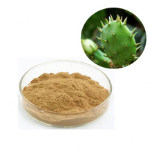 Hot Selling Wholesale Cactus Extract nopal extract