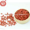 Ningxia zhongning goji baies de goji bio gros gros emballage