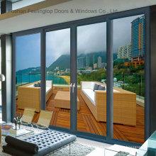 Portes coulissantes en aluminium coulissantes à chaud par le distributeur recherché (FT-D143)