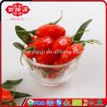IQF Fruta de Goji
