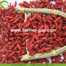 Factory Supply Nutrition Chinese Wolfberry secado