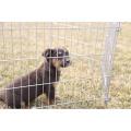 Galvanized 6 or 8 Meshes Pet Dog Playpen