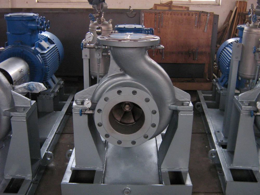 OH type Overhung Single Stage Pumps