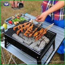 Barbecue de voyage extérieur portatif d'automne 3-5 personnes