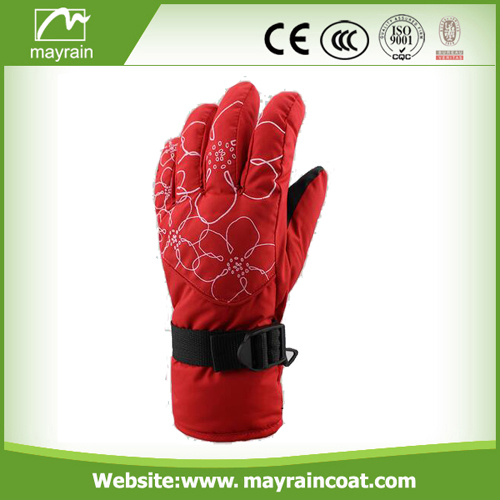 The Warmest Gloves