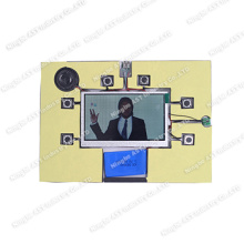 Video Mailer, Modulo audio MP4, Modulo video