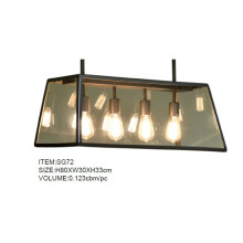 Elegant Metal Glass Pendant Lights for Bar, Coffee Shop (SG72)