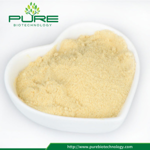 Top Quality Bulk Maca root Powder /Maca Powder