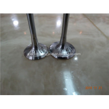 Auto Car Engine Valve for RENAULT