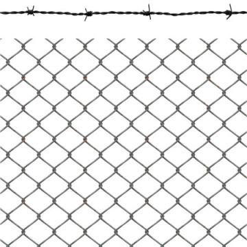 Electric Gal Diamond chian link wire mesh / wire fencing