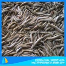 Lance de sable de haute qualité surgelée, bon fournisseur de fruits de mer