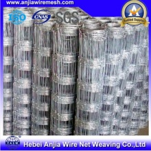 Galvanized Iron Knotted Wire Mesh Field Fence (anjia-524)