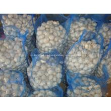 Embalaje suelto Bolsa de malla de ajo blanco puro 10kg
