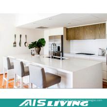 Mobília moderna do armário da cozinha do folheado da laca do estilo (AIS-K316)