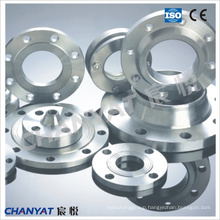 Stainless Steel Weld Neck Flange (F304L, F310H, F316L)
