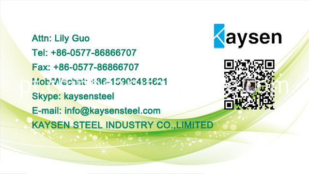Business Card Kaysen