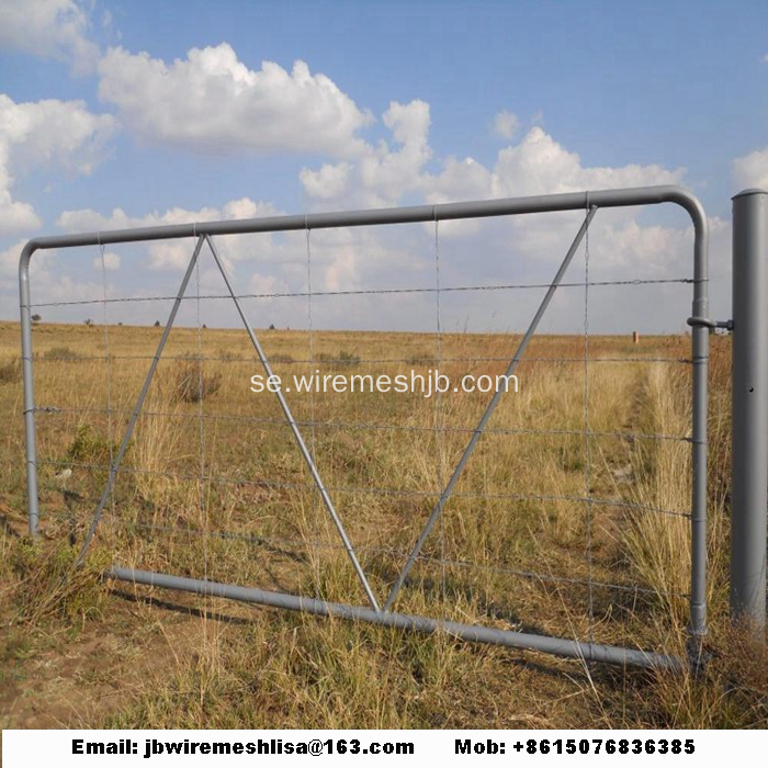 Hot Dipped Galvaniserad Australian Farm Gate
