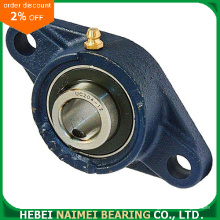 Cast Iron Housing Pillow Block Insert Bearing