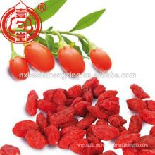 Chinesische Ningxia Wolfberry getrocknete Früchte
