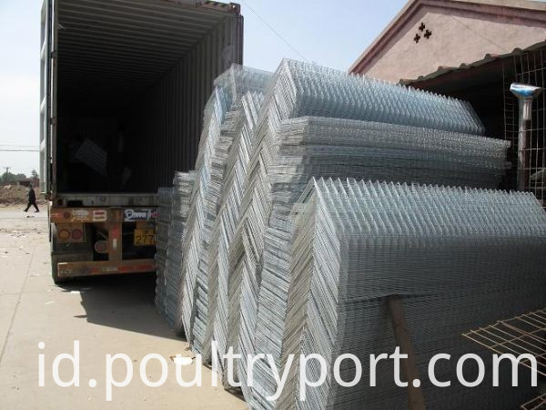 H type poultry cage paking