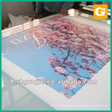 Frontlit Self Adhesive vinyl Banner for cosmetic Advertisement