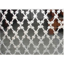Competitive Welded Razor Wire Mesh