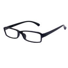 Professioneller optischer Rahmen (CP010-2)