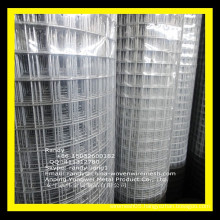 "YW-- 2x1"" 14G 36""x100' Black PVC Coated GALVANIZED Welded Wire Mesh Rolls"