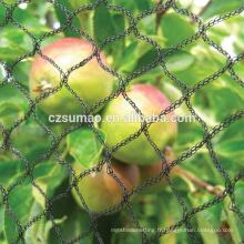 Personnalisé vente chaude noir anti-oiseaux netting fruits