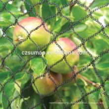 Personalizado venda quente preto anti pássaro rede de frutas