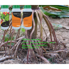 Root Promoter Liquid Aminoroot Fertilizer Drip Irriagtion