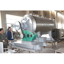 High Efficiency Vacuum reciprocating rake dryer