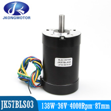 36V 138W Brushless DC Motor with Hall 120 Degree Electrical Angle