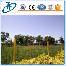 Panel pas peach kuning yang indah fencetiful