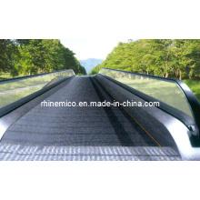 CE Caminhão Movimento Qualificado Transportador de Passageiros (GRM20)