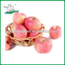 Chinesische frische rote Fuji Apfel / Fuji Apfel