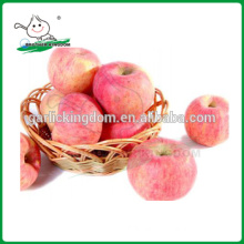 Chinese Fresh Red Fuji Apple/fuji apple