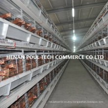 Layer Cage H Type for Poultry Farm Equipment