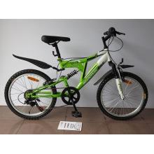 "20 ""Stahlrahmen Mountainbike (2003)"
