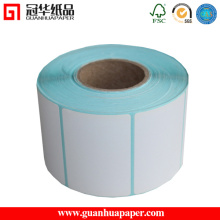 Thermal Transfer Label Used with Ribbon