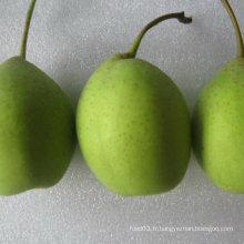 Bonne qualité de poire verte verte verte
