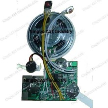 Recordable Sound Module, Sound Cards, Voice Chip, Voice Module Recorder