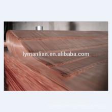 Chapa de madera de caoba natural cortada en lonchas chapas de Okume