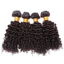 100 nenhum emaranhado virgem mongol encaracolado cabelo crespo, cabelo virgem do mongolian tecelagem