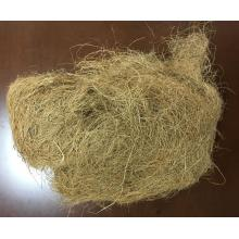 Coconut Fiber Yellow Import