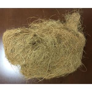 Coconut Fibre Yellow Import